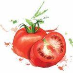 water-tomato
